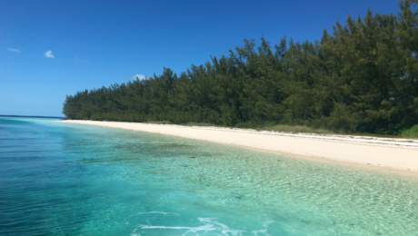 Abaco Island Getaway - Air Unlimited